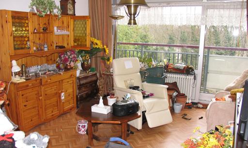 Allerommelopgeruimd.nl is gespecialiseerd in het leegruimen van kamers, huizen, flats, appartementen, etagewoningen, eengezinswoningen, aanleunwoningen en noem maar op.