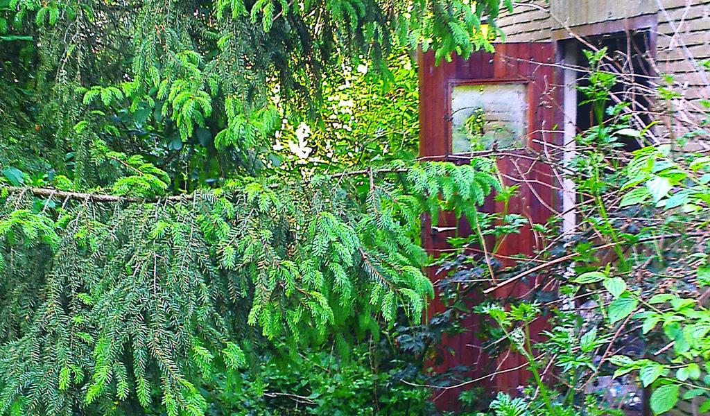 Tuin opknappen beautiful aanleg tuin westzaan with tuin for Tuin opknappen